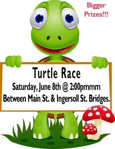 turtle race Saturday